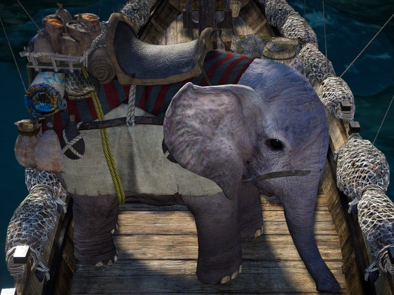 Dumbo hat keine Angst auf dem Meer