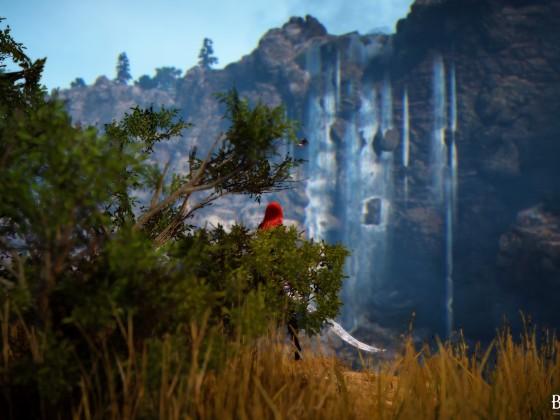 Die Aussicht im Territorium der Rotmähnen