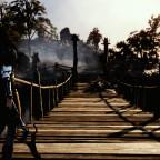 Die Brücke der Wölfe